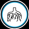 icon-root